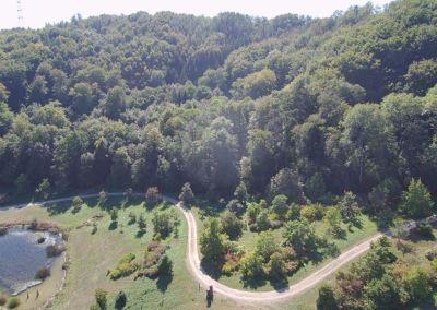 arboretum-3-3