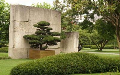 Enea Baummuseum